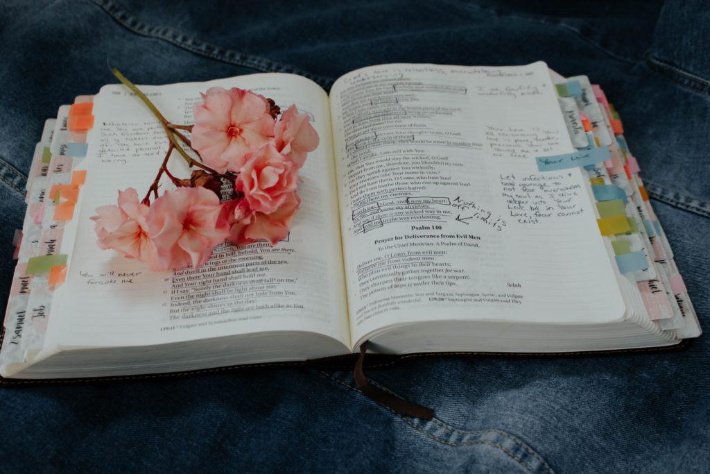 ゆっくり勉強